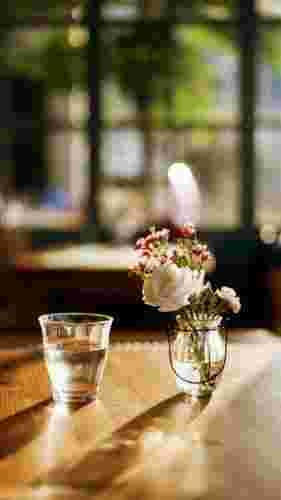 唯美静物室内花卉手机壁纸下载